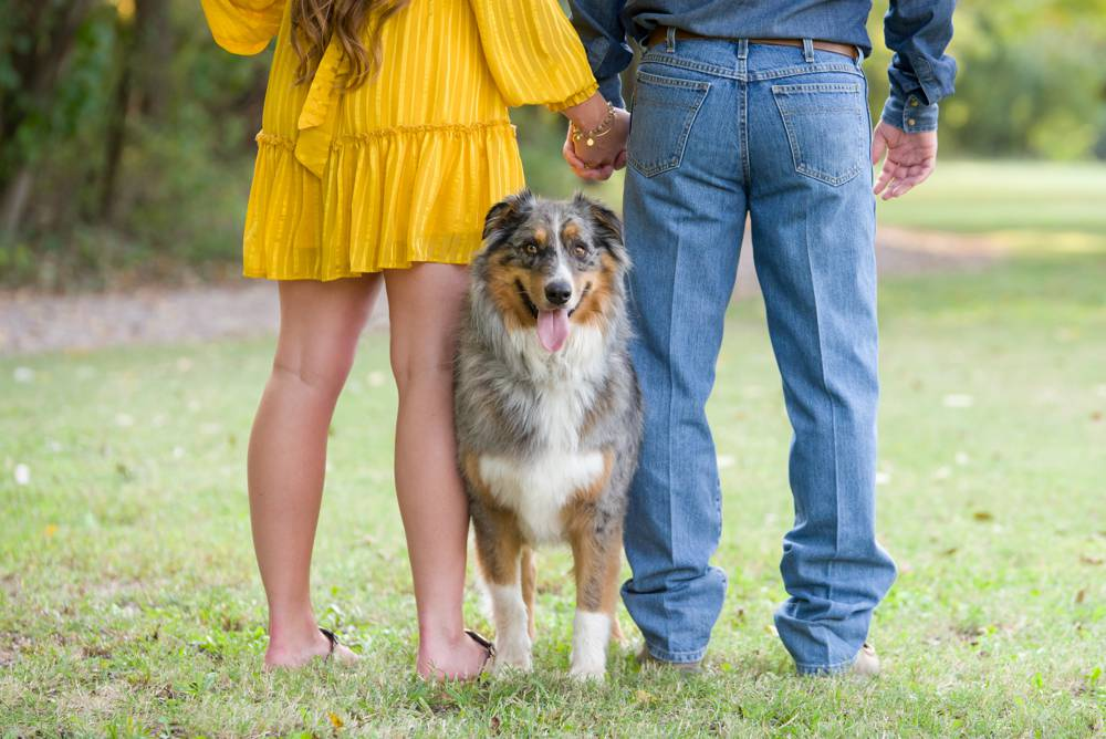 dog standing at feet of couple