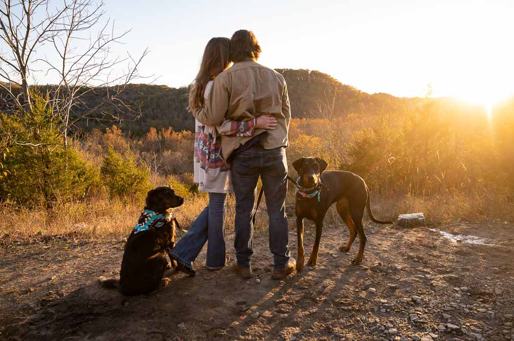 couple out in nature looking at sunset with dogs