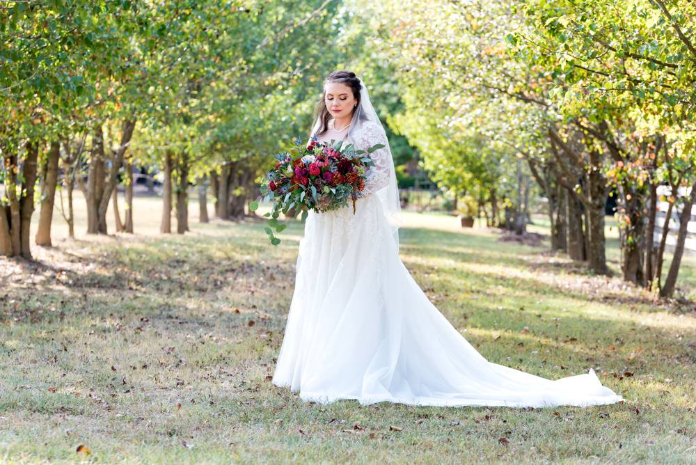 bride portrait with trees