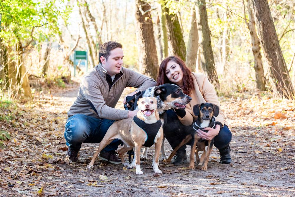 couple with 3 dogs in park