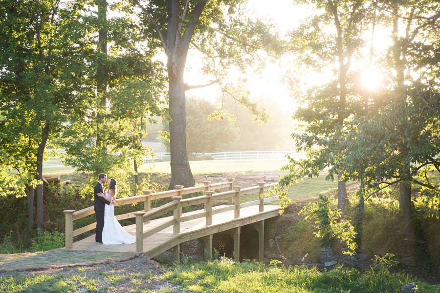 Sassafras Springs Vineyard wedding venue