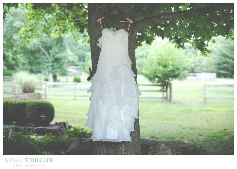 Rogers Wedding Arkansas dress on tree