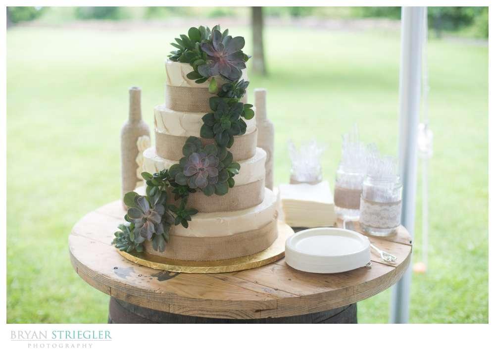 Rogers Wedding Arkansas wedding cake