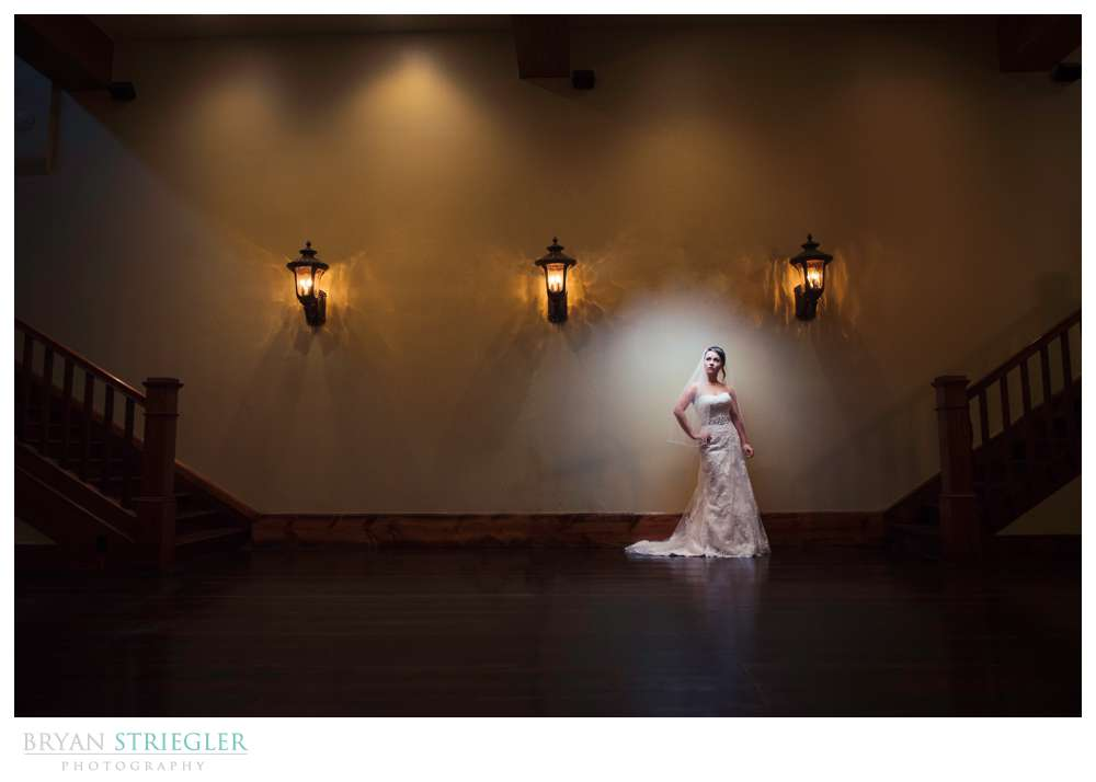 dramatic Rogers bridal portraits against wall