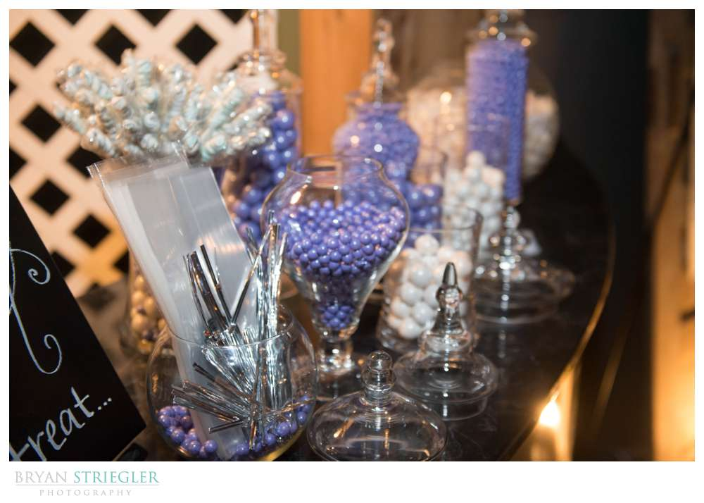 Fayetteville wedding photographer purple and white candy bar