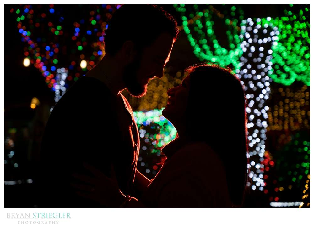 silhouette with Christmas lights