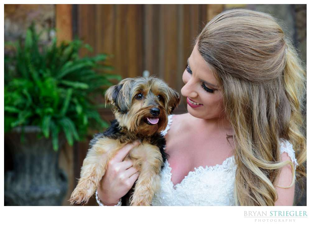 bridal with her puppy on the wedding day