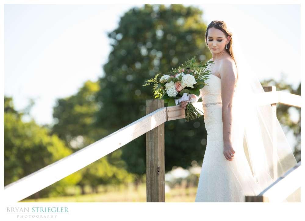 backlit bridge with bride