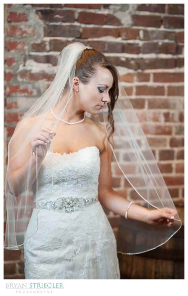 dramatic Rogers bridal portraits holding veil looking down