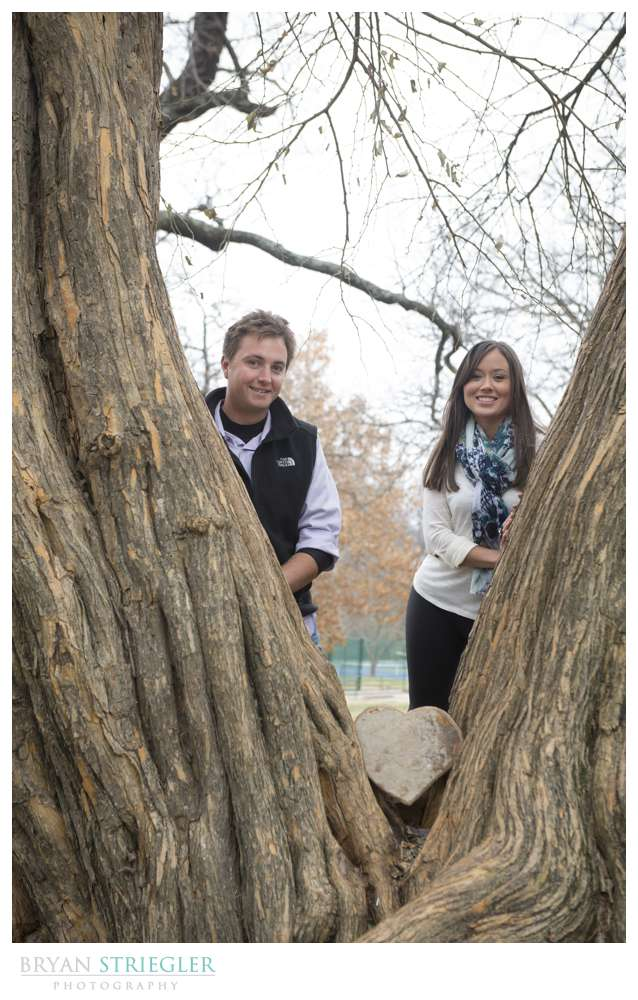 Engagement Photos in tree