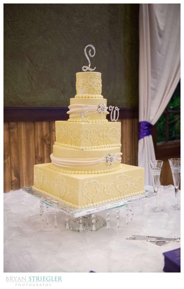 Northwest Arkansas Wedding Photographer yellow wedding cake