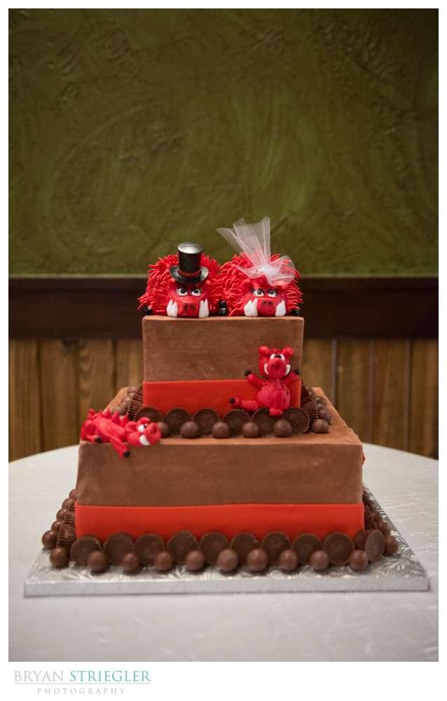 Northwest Arkansas Wedding Photographer Arkansas Razorback cake