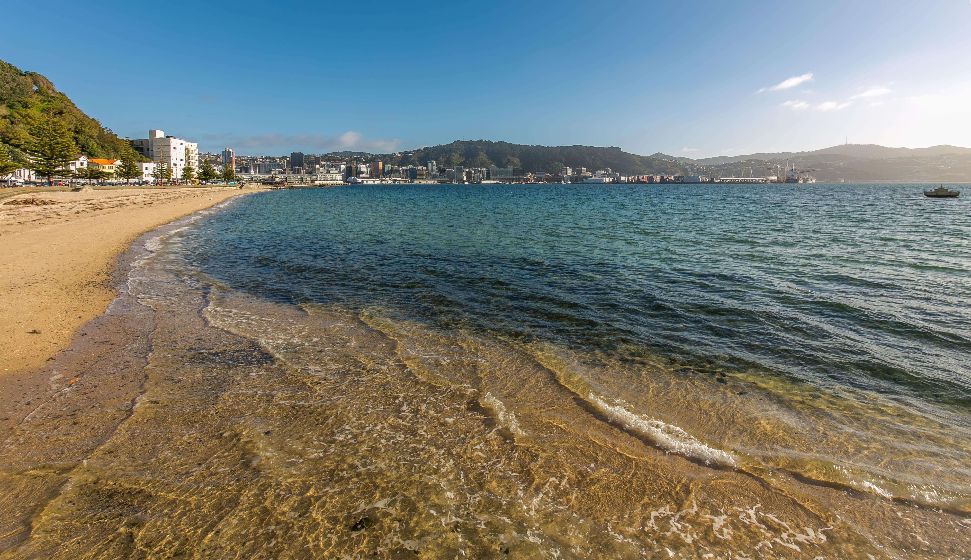 Relatable - Wellington