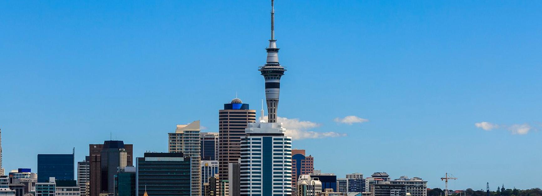 Zippi - Auckland