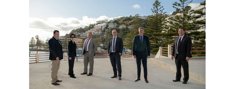 Professionals - Wellington City & Suburbs