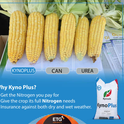 Power your crops with N-hanced-N nitrogen fertilizer for enhanced quality, yield and profit image