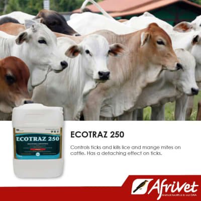 Ecotraz 250 - external parasite remedy image
