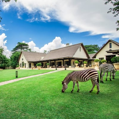 Get 20% off a luxurious getaway with amazing inclusions this festive season image
