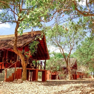 A peaceful eco lodge in the African bush image