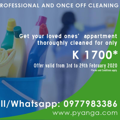 Get your home sparkly clean image