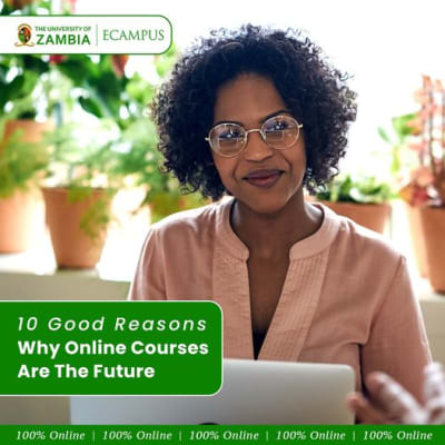 10 Good Reasons Why Online Courses Are The Future image