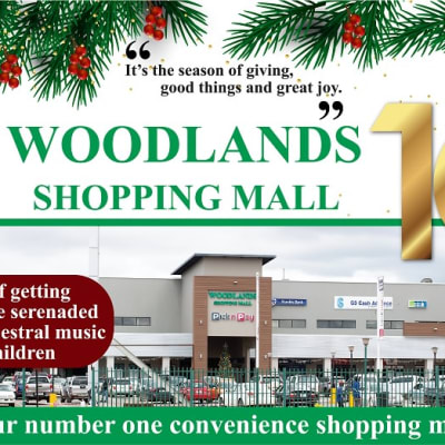 Christmas at Woodlands Shopping Mall image