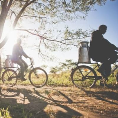Bicycles that are ideal for Zambian roads image