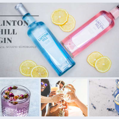 Blue London Dry Gin and Pink Strawberry Flavoured Gin for K479 image