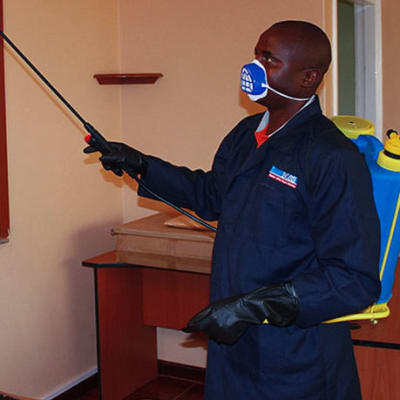 Pest control and Fumigation image