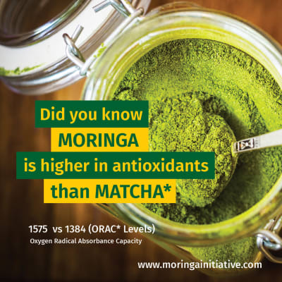 Did you know Moringa is higher in antioxidants than Matcha? image