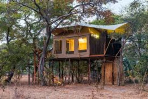 Fig Tree Bush Camp - Peak and green season deals