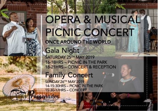 Opera and Musical Picnic Concert