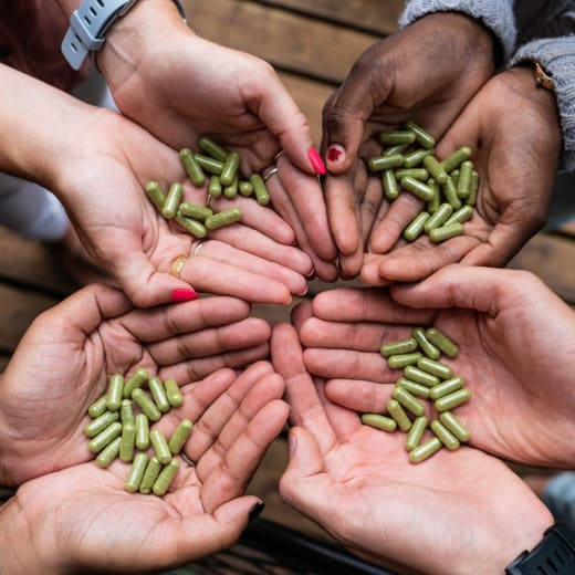 Boost your immune system with the magical properties of Moringa