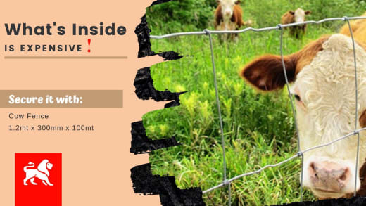 Amazing discounts on cow fence