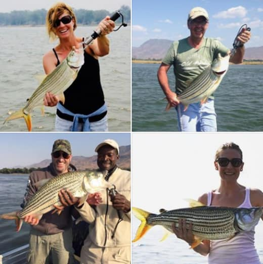 Catch a Tiger fish in the Zambezi with Baines' fly fishing clinics