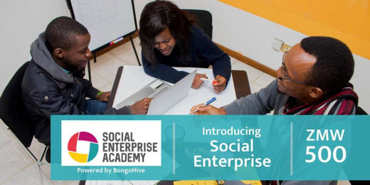 Introducing Social Enterprise - Programme