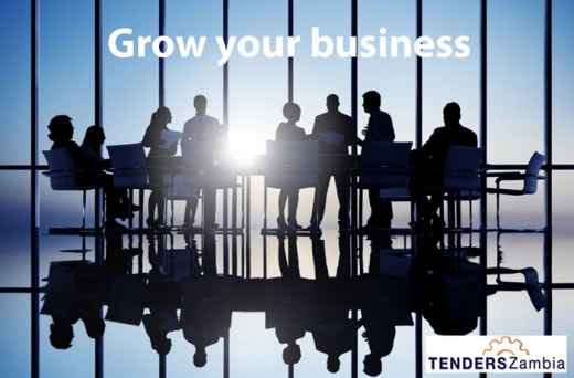 Tenders Zambia, tracking all business opportunities in Zambia