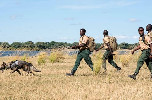 Protects wildlife and the natural resources of the Lower Zambezi