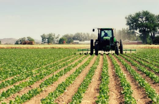 A broad spectrum of agricultural insurance solutions