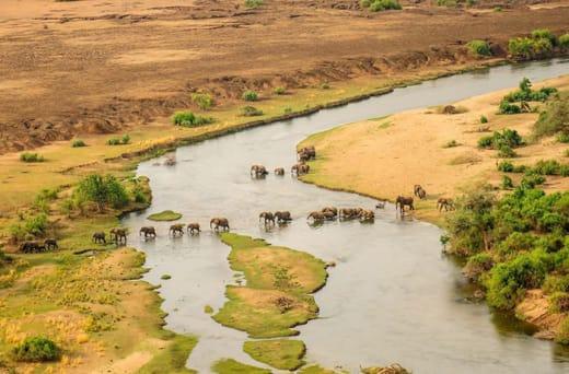Excellent budget safaris