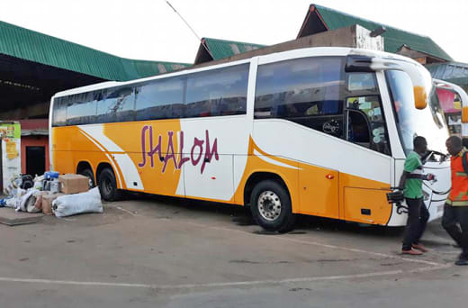 Business class buses