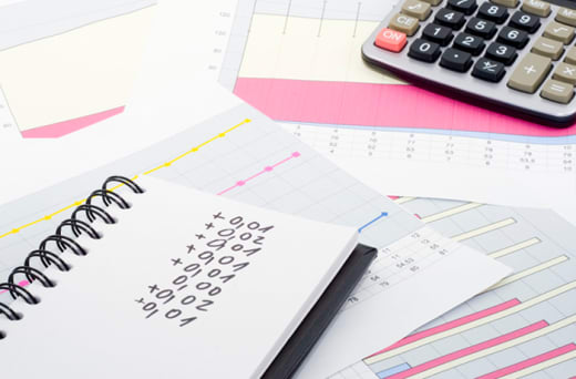 Writing, marketing and support of the Belina Payroll