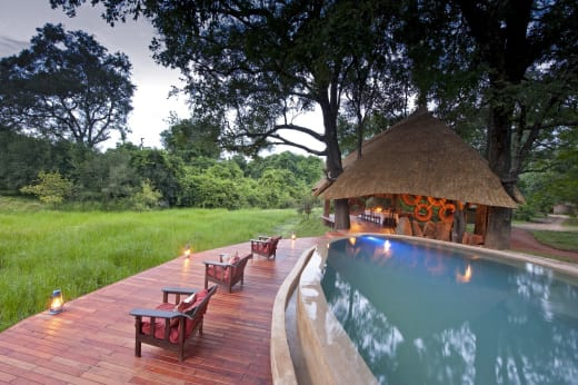 Enjoy Christmas and New year in South Luangwa National Park