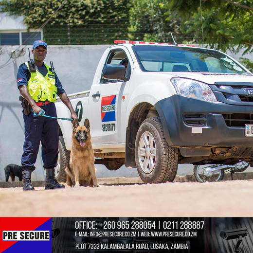 Trained K-9 dog unit available