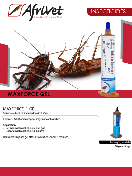Maxforce Gel for insects available in stock