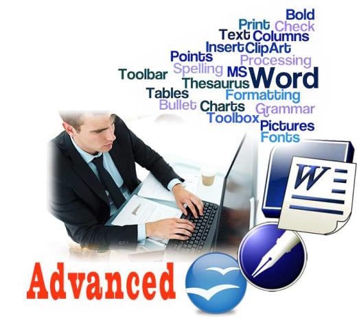 Microsoft Word advanced level training