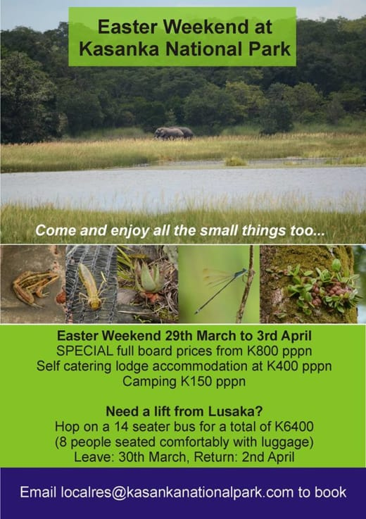 Kasanka National Park Easter Special