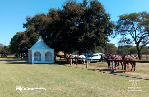 Equipment supplied for Australia vs Zambia International Polo match