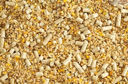 Nutritionally-balanced animal feed for almost all types of animals