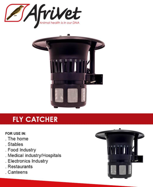 Fly catchers available in stock